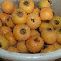 Мушмула.сорт Танака,плоды
