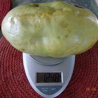 Вес плода гигантской гранадиллы