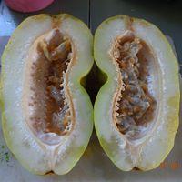 Плод гранадиллы гигантской в разрезе