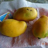Плоды мангоСорт Бани лехо