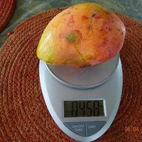 Вес плода манго, сорта Ирвин