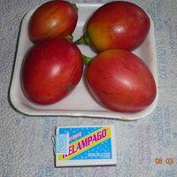 Плоды томарилло- помидорного дерева